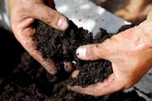 Handling garden soil - Legionnaire's disease